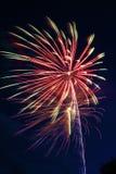 Himmel-Blumen Lizenzfreies Stockfoto
