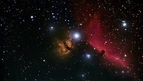 Himmel för natten för djupt utrymme för den Horsehead nebulosan är härlig den Horsehead nebulosan en mörk nebulosa i konstellatio Arkivbilder