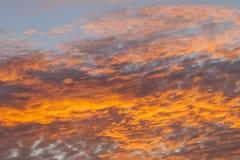Himmel för soluppgång Europa för ny tech taxesAwesome dramatisk brand-röd brinnande royaltyfria bilder