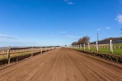 Himmel för spår för utbildning för lopphäst blå Royaltyfria Foton