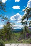 Himmel-Garten Lizenzfreies Stockfoto
