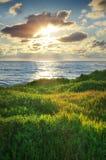 Himmel, hav och grönt gräs Arkivfoto