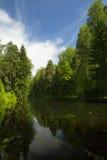 Himmel i reflextions flod Royaltyfri Foto