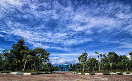 Himmel im Park Stockfotos