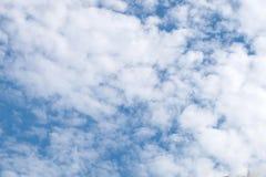 Himmel ist hell Stockfotografie