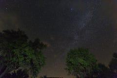 Himmel med många stjärnor i toppiga bergskedjan del Segura Fotografering för Bildbyråer