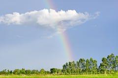 Himmel med regnbågen arkivbild