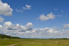 Himmel med stora moln för regnmoln i den blåa himlen och ett grönt fält Slight blur i löpare för att visa rörelse Royaltyfria Bilder