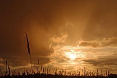 Himmel nach einem Sturm Stockfotografie