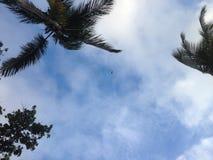 Himmel och gömma i handflatan - feriedestinationer Royaltyfria Foton