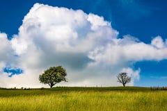 Himmel och moln över en engelsk bygd royaltyfri fotografi