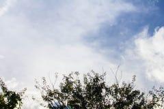 Himmel och moln i vinter arkivfoto