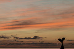 Himmel på solnedgången i Cotillo Royaltyfri Foto