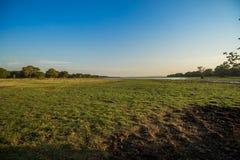 Himmel und Ansicht von Kala-wewa Landschaft lizenzfreie stockfotos