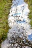 Himmel- und Baumastreflexion im Wasser Lizenzfreie Stockfotografie