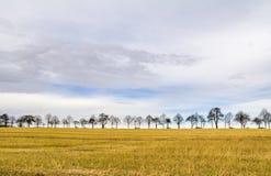Himmel und ländliche Landschaft Lizenzfreies Stockfoto