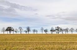 Himmel und ländliche Landschaft Stockbild