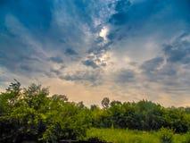 Himmel vor dem Sturm Stockbild