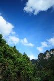 Himmel, Wald, Berg Stockbilder