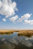 Himmel, Wolken und Reflexion Stockfotografie
