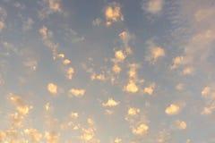 Himmel zu den Erbsen lizenzfreie stockbilder