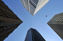 Himmel zwischen Wolkenkratzern, mit Vogel Stockbilder
