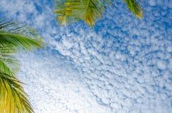 Himmelansicht mit weißen Wolken von Adler Strand, Aruba Stockbilder