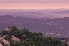 Himmelberg och skog i den morgonBukhansan nationalparken arkivfoto