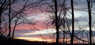 Himmelfärger och mörka träd på det Fruska goraberget Royaltyfri Foto