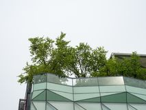 Himmelgarten auf Dachspitze Stockbilder