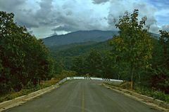 Himmelmoln tropiska Forest Road Right Turn Background arkivbilder