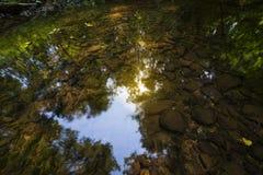 Himmelreflexion im klaren Wasser des Waldstromes Stockfotos