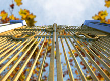 Himmels-Golden Gate und Autumn Leaves Lizenzfreie Stockfotos