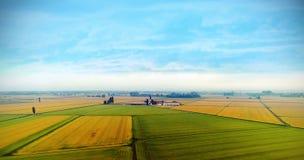 Himmelsikt av fältet för gult och grönt gräs Royaltyfria Foton