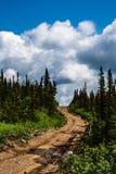 himmelväg till Royaltyfria Bilder