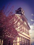 Himmlische Perspektive der historischen Schule durch die Bäume Stockfotos