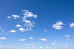 Himmlischer Drache Stockbilder