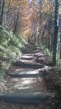 Himmlisches Treppenhaus Stockfotografie