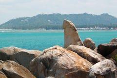 Hin merci (roche première génération) Image libre de droits