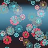 Hinagiku peu de chrysanthème Image stock