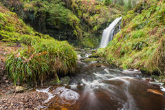 Hindhope Linn and Burn Stock Image