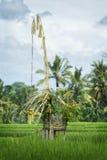 Hindischer Reis-Feld-Schrein, Bali, Indonesien stockbild