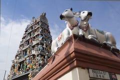 Hindischer Tempel, Singapur Stockbilder