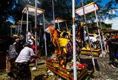 Hindoese ceremonie Royalty-vrije Stock Foto