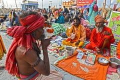 Hindoese Sadhu Stock Afbeeldingen