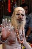 Hindoese Sadhu in India stock afbeelding