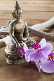 Hindouisme et relaxation pour la beauté intérieure images libres de droits