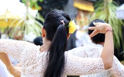 Hindu celebration at Bali Indonesia, religious ceremony with yellow and white colors, woman dancing. royalty free stock images