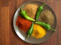 Hindu cuisine Stock Photography