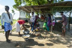 Hindu followers cook rice in front of a temporary roadside temple near Pottuvil in Sri Lanka. Stock Image